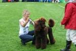 Anna med Rufus som fick CK och blev Bhkl reserv i Askersund 2008