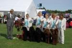 Avelsgruppen Aida med Marley, Molly, Irma och Leia blev BIS 1 i Nyköping 2009
