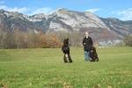 En fin bild från Liechtenstein, man kan undra vad Speja har fått syn på, kan det vara husse eller