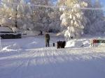 En fin vinterbild med husse