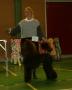 Gratulerar Anna och Lisa då Lisa blev BIS Junior på SPK Sandviken