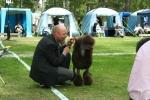 Per-Harald med Rufus på Öland 2009