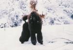 Snödrottningen Minette