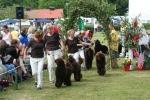 Uppfödargruppen Pudelnationalen 2008