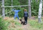 Oj Vad var det där som flög upp i skogen framför Knaster