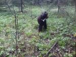 Speja på viltspårsträning maj-09